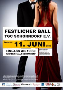 Plakat FB 2016